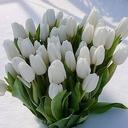 Поздравляю с праздником!!!На Востоке люди верят, что Тюльпаны приносят счастье, поэтому их дарят тем, Кому хотят пожелать благополучия и процветания.... Я с букетиком тюльпанов к вам! ТУК-тук ...С ПРАЗДНИКОМ,ВАС, МОИ ДОРОГИЕ!!!!!!!!!!!!